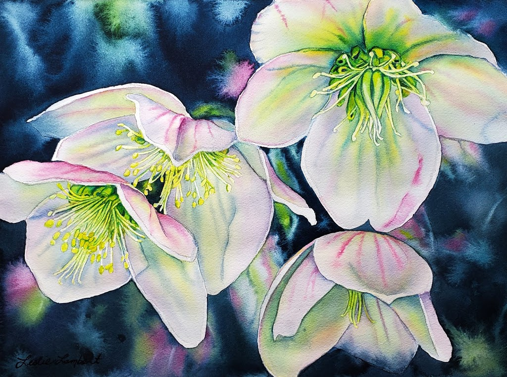 Winter Roses Online Watercolor Course Now Available